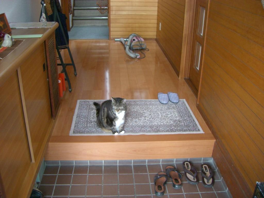 placeholder2 - 8 Tips Desain Rumah Ala Jepang yang Bikin Suasana Jadi Tentram
