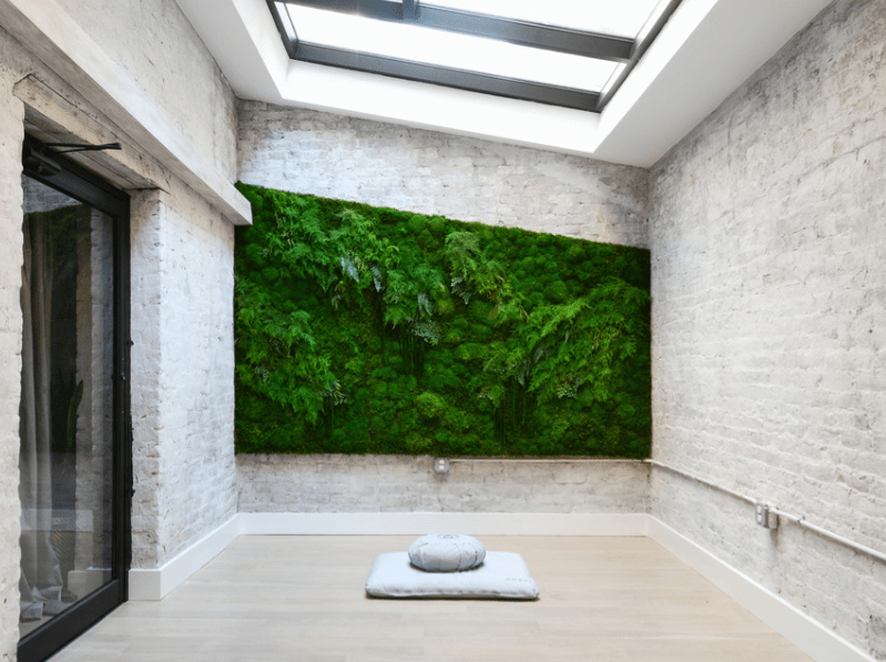 serene feature image mndfl min 1 - 8 Model Taman Rumah Sederhana Ini Bakal Bikin Rumah Anda Makin Cantik dan Segar